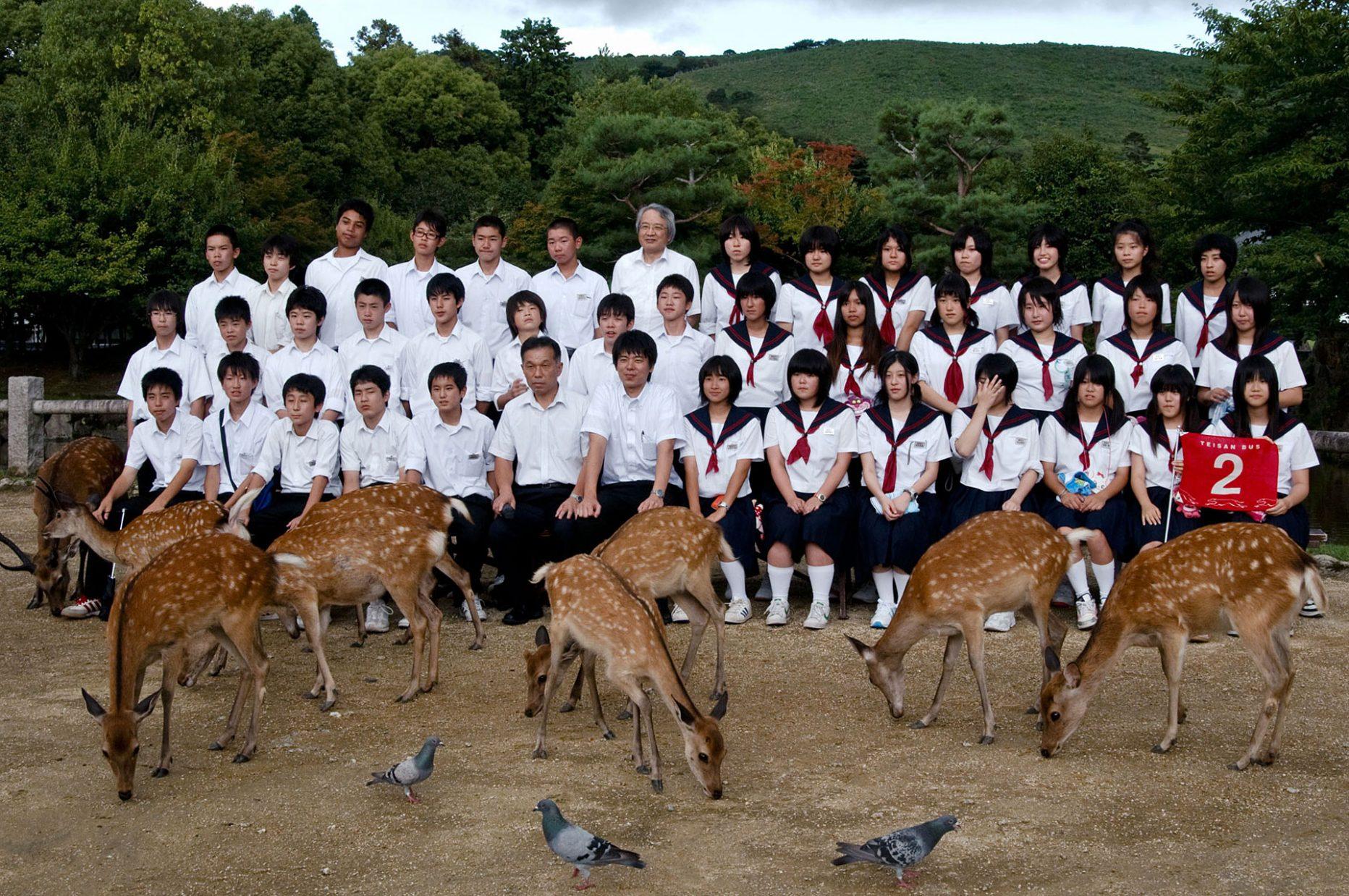 Home_Nara2